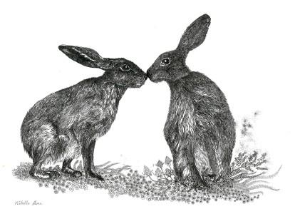 Hare kiss